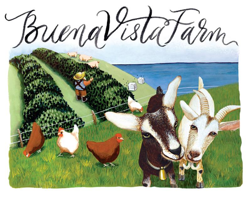 Buena Vista Farm
